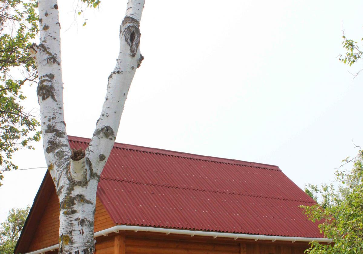 Casette in legno con copertura Onduline Base